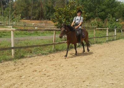 3a semana Campus equitacion Can Caldes (69)
