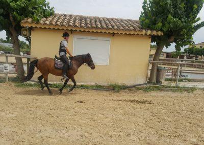3a semana Campus equitacion Can Caldes (71)