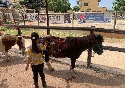 Campus Can Caldes Verano 2019_1 (17)