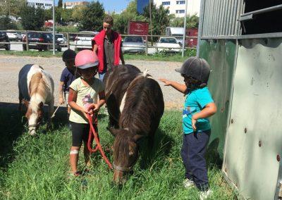 campus equitacio can caldes semana 7 (20)